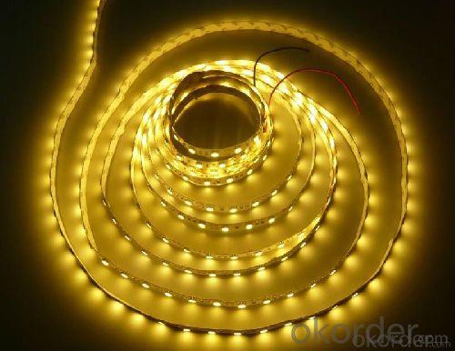 strip light/ SMD3528 60LEDs/m