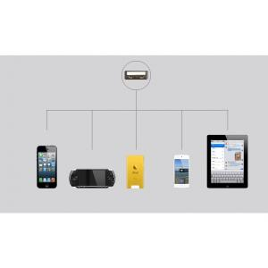 Customizable Car Charger for iPhone 5/5s/ iPad/ iPod/ Samsung/ HTC/E- Cigarette with Dual  USB Port