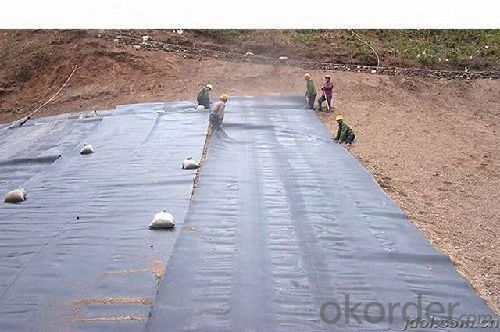 Fiberglass Geogrid with CE Certification