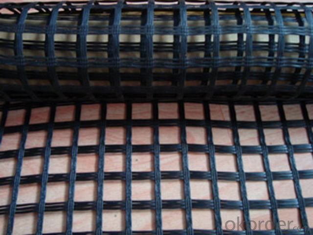Flexible HDPE Uniaxial Geogrid Supplier from China