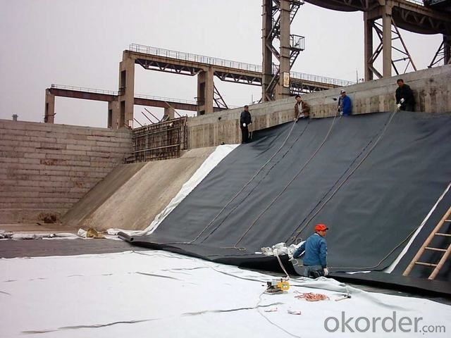 PE Geomembrane For Pond Liner and Other Waterproof Project