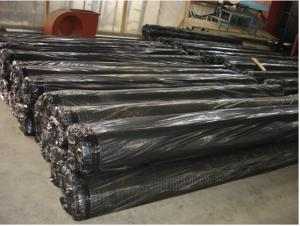 High Tensile Plastic Polypropylene Biaxial Geogrid 4m*50m/Roll High for Road Consturction