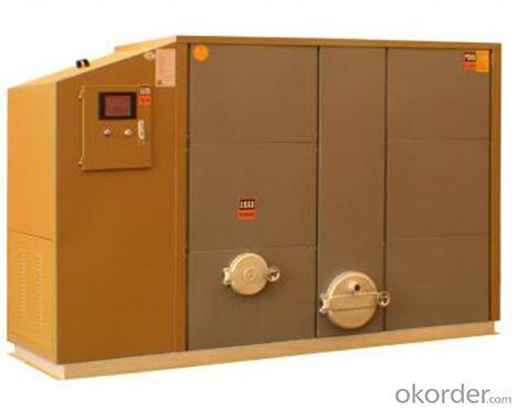 High-end Horizontal Biomass Boiler--116KW