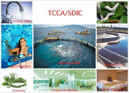 90% Available Chlorine Tablet/Trichloroisocyanuric Acid(TCCA)/Granules/Powder/Tablet on Hot Sales