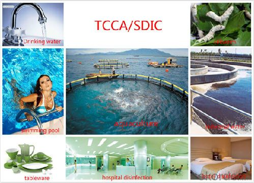 Trichloroisocyanuric Acid(TCCA) cas no. 87-90-1 Biocide/Germicide/Bactericide Water Treatment  with Best Quality