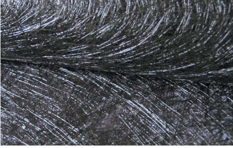 High Quality Basalt fiber Chopped Strand with Best Price