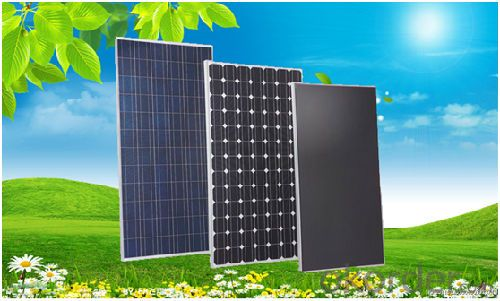 Single crystal silicon components 50W Asia