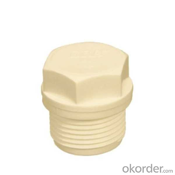 High Quality  Thread  plug  Thread  plug