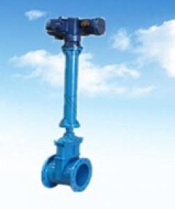 DN66 Ductile Iron Rubber Gate Valve With Long Stem