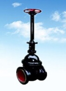 DN50 Cast Iron Rubber Gate Valve with long stem