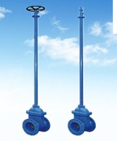 DN50 Ductile Iron Rubber Gate Valve with long stem