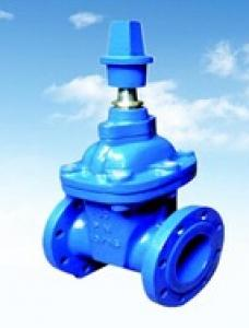 DN80 Ductile Iron Rubber Gate Valve