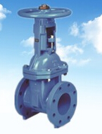 Rising Stem Rubber Gate Valve