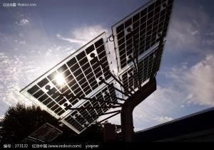 poly  Solar Panel 01
