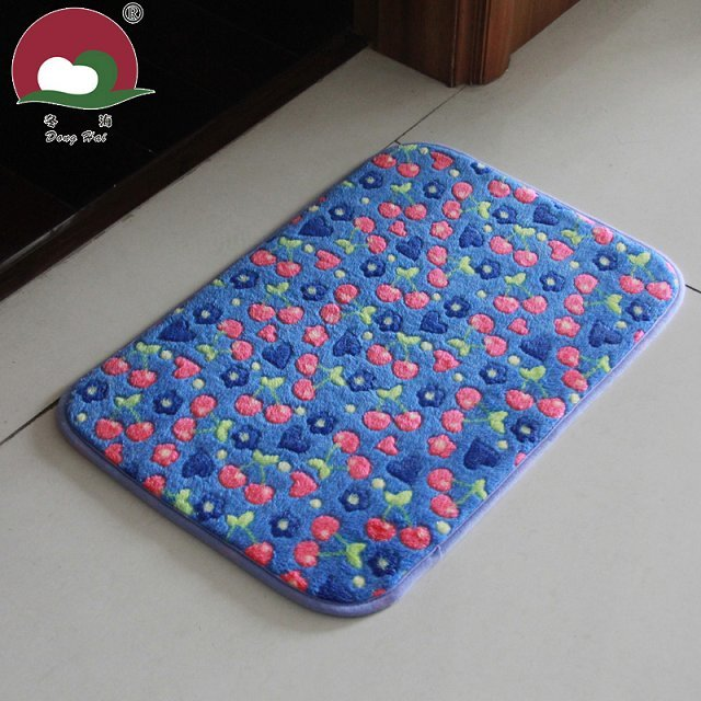Coral Fleece Pattern Entry way Door Mat
