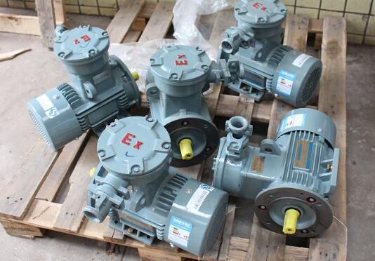 Siemens EX Series Motor