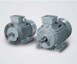 Siemens ILE0001 Series Motor