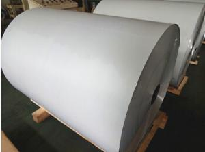 Color Coated Aluminium Coil with High Quality