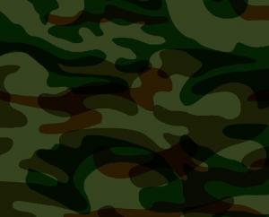 PRINGTING STEEL---camouflage pattern