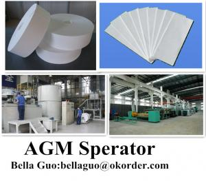 AGM Separator Battery Used for Electric Vehicle