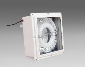explosion-proof LVD induction lamp 04-005 waterproof lamp