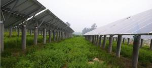 Open farming and light conplementation support system