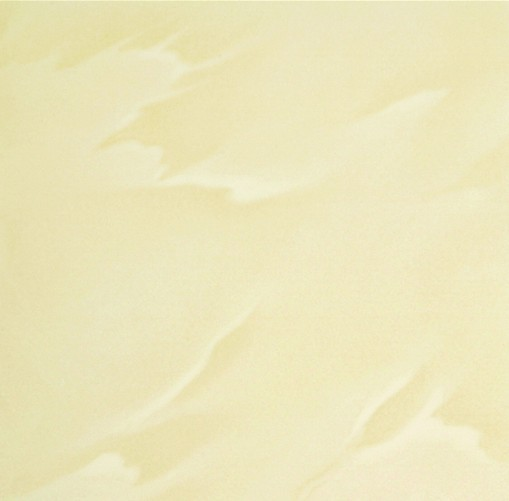 Polished Porcelain Tile The Yellow Color CMAXSB4633