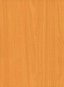 Pre-painted Galvanized Steel Coil-EN10169-WOODEN10