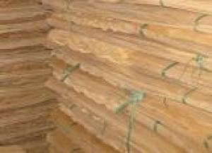 MR Glue Film Faced Plywood Finger Jointed Film Faced Plywood