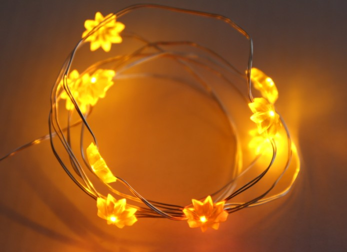 Copper Wire Light String with Battery Box
