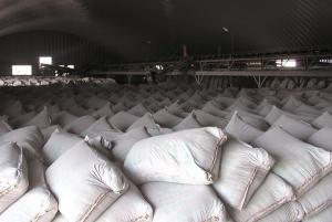 Portland Cement from China for Exporting