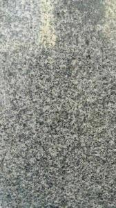 Spary White Granite/Granite/Natural Granite Stone