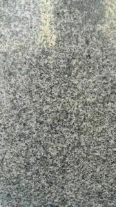 Natural Granite 1000*1000 for construction G365
