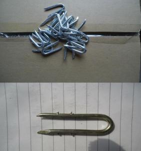 Fence Staples U Nails Manufactory with Good Quality