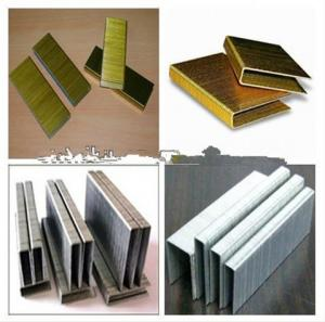 Staple U Nails Good Quality Galvanized, Competitive Price, High Efficient Cost