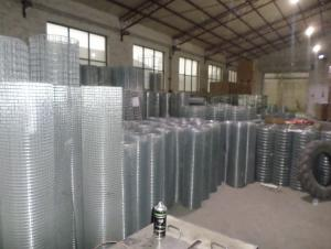 Welded wire mesh-1