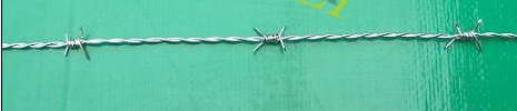 Galvanized Barbed Wire with good quality