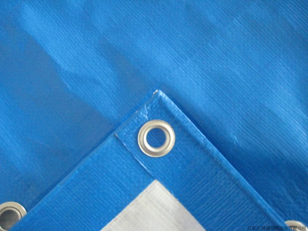PE BLUE TARPAULIN
