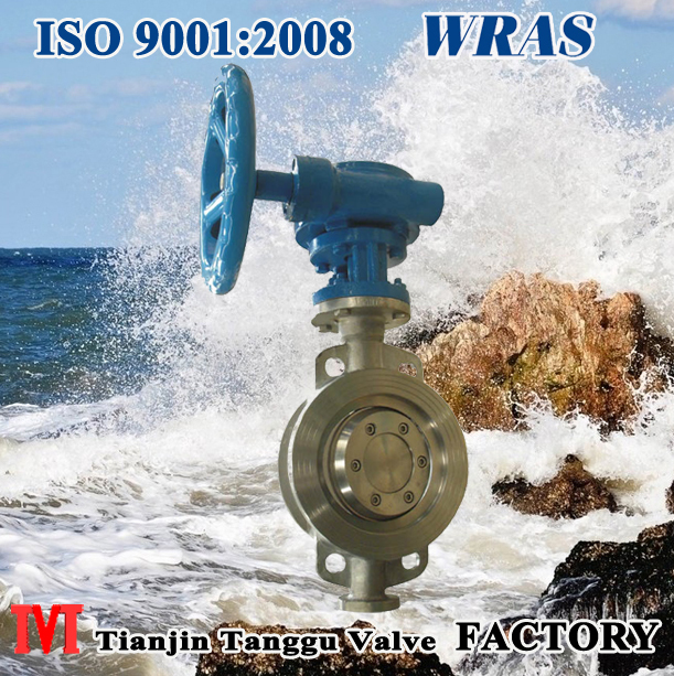 Hard seal wafer type butterfly valve