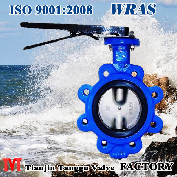 Manual Operated Lug Type Butterfly Valve without pin