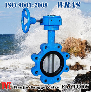 Gear Operated Lug Type Butterfly Valve
