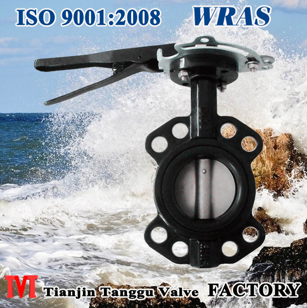Wafer Type API Butterfly Valve With Locking Device