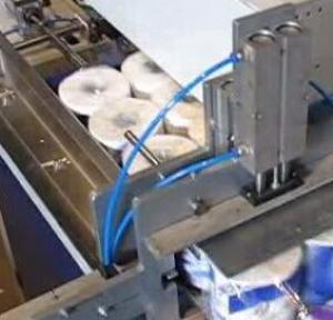 Double Conveying Toilet Paper Packing Machine For Multiple Rolls