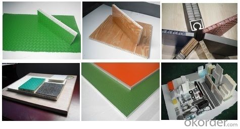 FRP FIBER REINFORCE PLASTIC Sandwich Panel