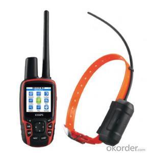 GPS Walkie Talkie