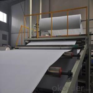 PVC waterproof membrane Reinforced