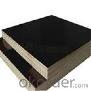 Double Film Plywood 21mm Thickness