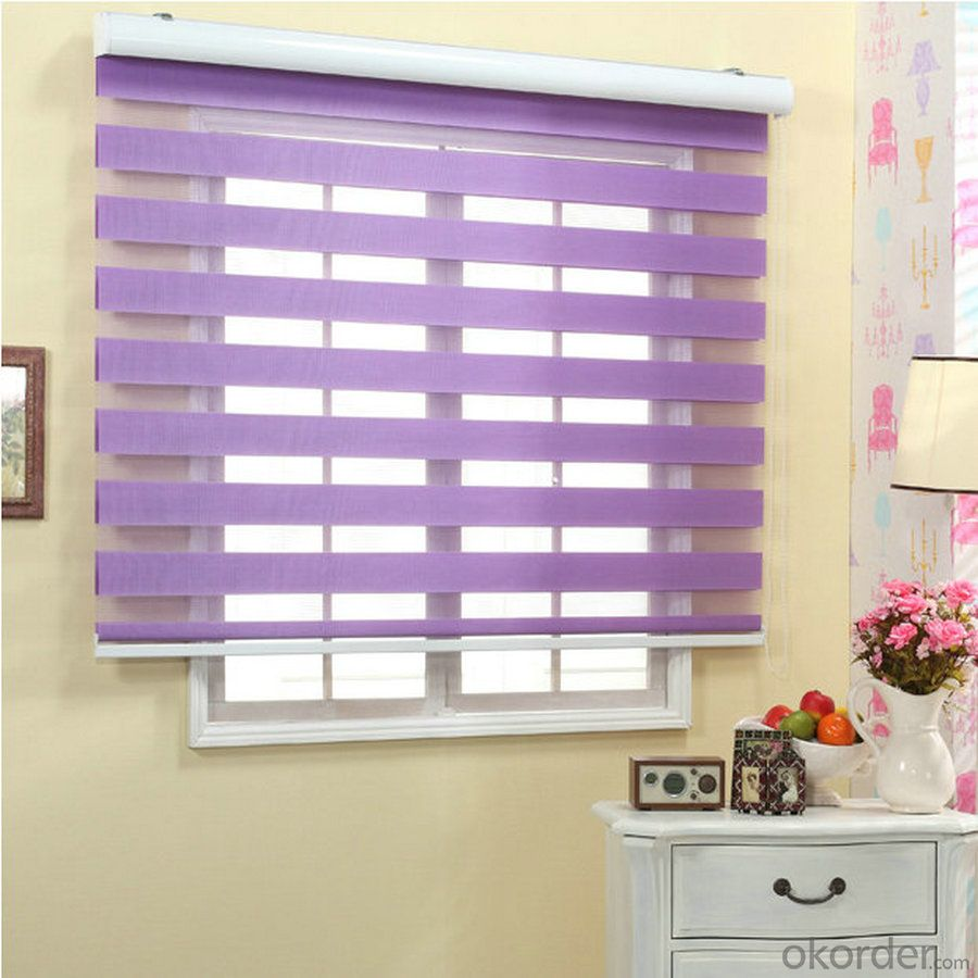 Zebra Roller Blind Fabric