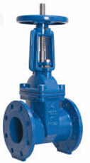 DI Rising Stem Resilient Seated Gate Valve