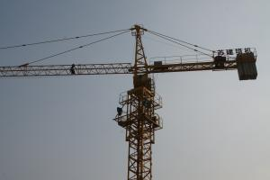 SJ TOWER CRANE QTZ50-TC5008